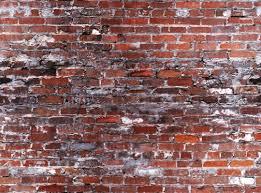 basement remodeling ideas basement walls