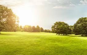 turf management greencast syngenta
