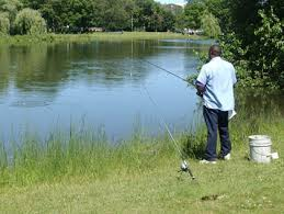 best places to go fishing near chicago cbs chicago