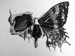 skull butterfly on skull and