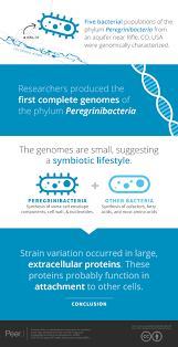analysis of five complete genome sequences for members of the