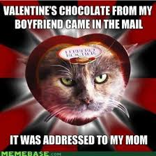 Happy Valentines Day Funny Meme - funny valentines day memes