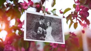 after effects template l free download wedding photo album and