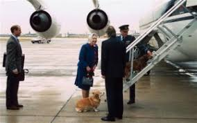 the queen and her corgis happy 90th birthday queen elizabeth ii