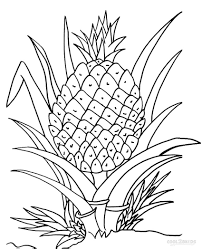 Pineapple Trend by Trend Pineapple Coloring Page 31 In Coloring Pages Online With