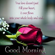 The Best Love Quotes For Her by 20 Awesome Good Morning Says Glavo Quotes