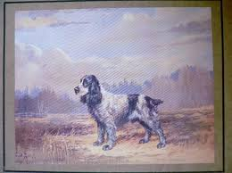 314 best dogs images on vintage and plate