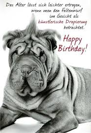 coole geburtstagssprüche 263 besten happy birthday bilder auf alles gute zum