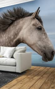 17 best equestrian and horse wallpaper images on pinterest horse calm and tranquil wall mural from wallsauce called wind in my hair equestrian