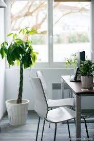bureaux professionnels bureaux professionnels décoration scandinave et épurée signé inf