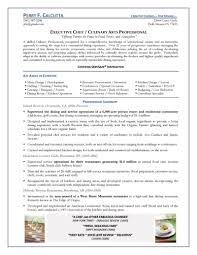 Professional Summary Resume Examples by Chef Resume