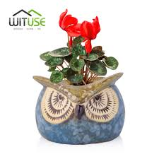 compare prices on indoor plant nurseries online shopping buy low
