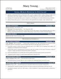 executive resume example hr executive resume sample in india free resume example and cv samples for freshers doc mediterranea sicilia professional perfect resume example resume and cover letter sample