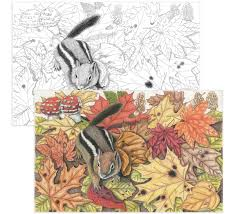 color escapes coloring kit garden crayola