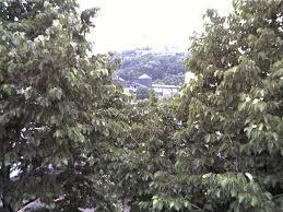 Webcam Bad Essen Live Webcam Bad Godesberg Godesburg Webcam