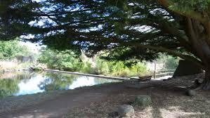 Kyneton Botanical Gardens Kyneton Botanical Gardens Day Trip