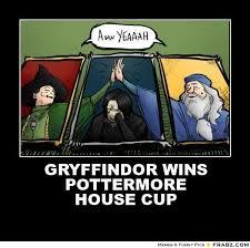 Harry Potter House Meme - image result for harry potter house cup memes harry potter