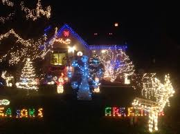 holiday lights tour detroit 38 best local christmas lights images on pinterest christmas