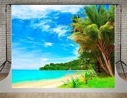 Wedding Backdrop Amazon 75 Best Summer Beach Backdrop Images On Pinterest Photography