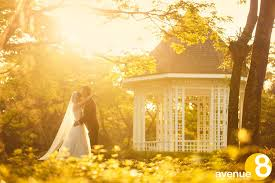 wedding backdrop singapore 10 places for pre wedding photography in singapore avenue 8