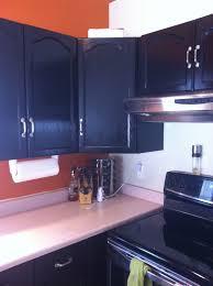 Updating Oak Kitchen Cabinets Kitchen Cabinet Generosity Kitchen Cabinets In Spanish Rustic