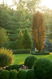 300 best formal landscaping ideas images on pinterest formal
