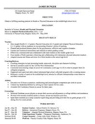 Examples Of Objective In A Resume by Resume Writing Employment History Full Page