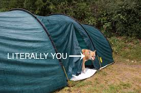 things that happen when you 19 things that happen when you try and go camping in britain