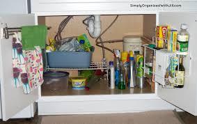 Under Kitchen Sink Storage Ideas Under Kitchen Sink Organizer 36 Stunning Decor With Under Sink