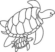 amazing turtle color pages coloring page 11 free teapot