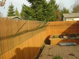 Backyard Or Back Yard by Catproof Your Yard 8 Steps With Pictures