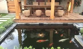 20 koi ponds that will add a bit of magic to your home