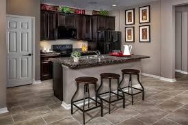 Florida Kitchen New Homes For Sale In Punta Gorda Fl Tuscany Isles Community By