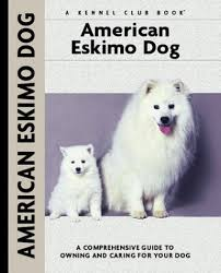 pictures of a american eskimo dog american eskimo dog a comprehensive guide to owning and caring
