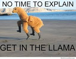 No Time To Explain Meme - no time to explain get in the llama weknowmemes