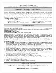 professional format resume professional resume professional resumes pinterest
