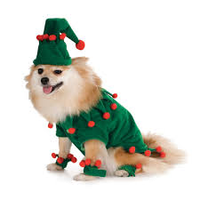pet christmas christmas dog costume picture dog christmas pet collection world