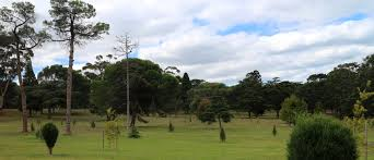 Geelong Botanic Gardens by Whose Idea Was It To Plant The Eastern Park As A Pinetum