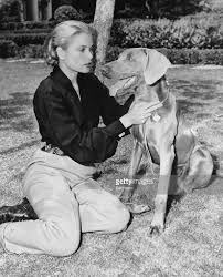 grace kelly petting a dog pictures getty images