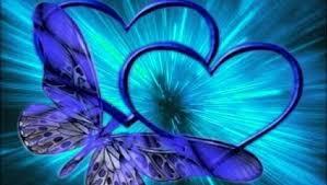 download butterfly wallpaper free gallery
