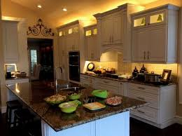 best under cabinet led lighting kitchen wonderful under cabinet led lighting kitchen collection interior