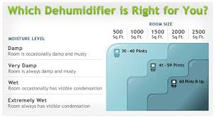 Recommended Basement Humidity Level - 6 questions you should ask about your home dehumidifier