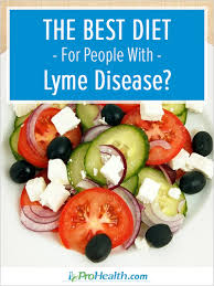 the best diet for people with lyme disease