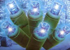 everstar set of 60 blue led mini lights with green wire