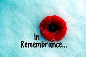 remembrance day denna u0027s ideas