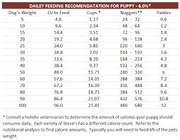 australian shepherd 6 month weight feeding instructions
