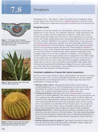 Lab Bench Transpiration 9 1 9 2 Transport In Plants John Osborne U0027s Teaching U0026 Learning