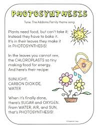 photosynthesis for kids primary theme park
