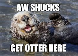 Aww Shucks Meme - meme creator aw shucks get otter here meme generator at