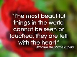the most beautiful things in the world cannot be seen or touched